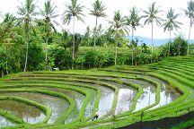 Rio Bali Tours, Seminyak, Indonesia
