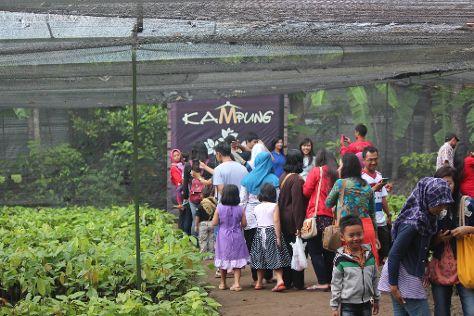 Kampung Coklat, Blitar, Indonesia