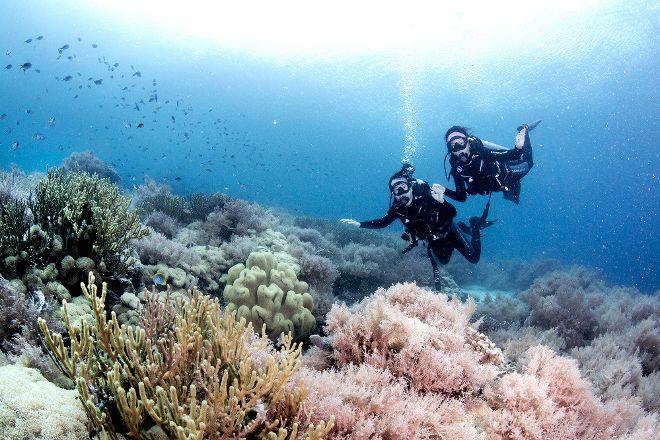 Bali Fun Diving, Denpasar, Indonesia