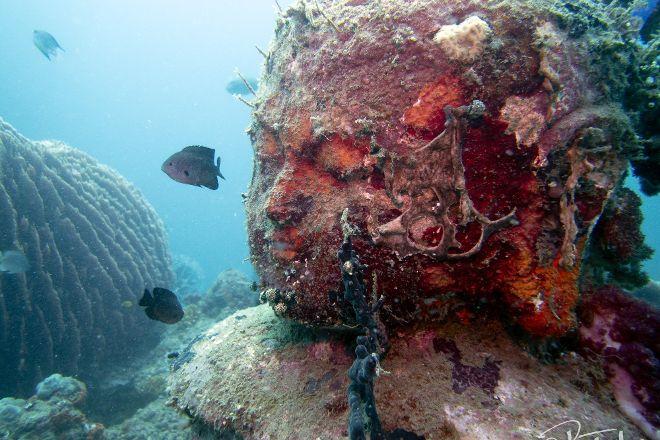 Sea Rovers, Pemuteran, Indonesia