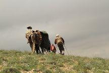 Golestan National Park, Gorgan, Iran