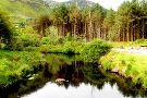 Glenteenassig Forest Park