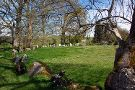 Grange Stone Circle Lough Gur