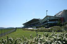 Leopardstown Racecourse, Dublin, Ireland