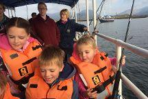 Letterfrack Sea Safari Boat Tours, Galway, Ireland