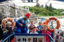 Letterfrack Sea Safari Boat Tours