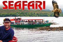 Seafari Cruises