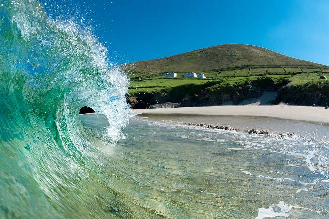 Dingle Bay Speed Boat Tours & Great Blasket Island Experience, Dingle, Ireland