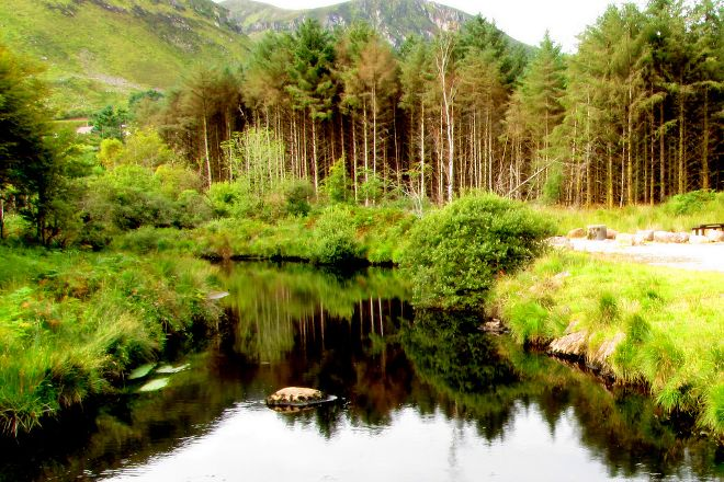 Glenteenassig Forest Park, Castlegregory, Ireland