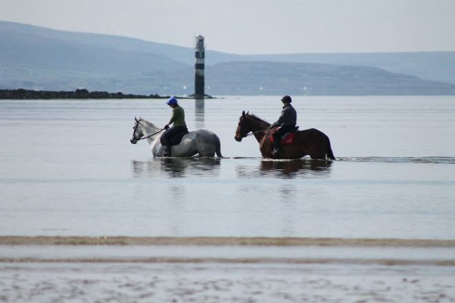 JT Equestrian, Galway, Ireland