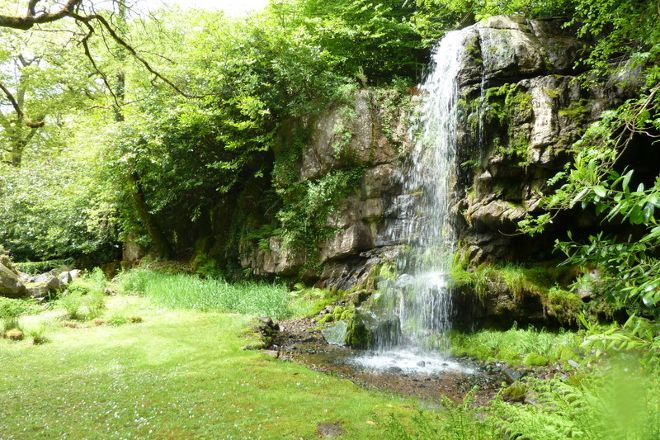 Kilfane Waterfall and Glen, Thomastown, Ireland