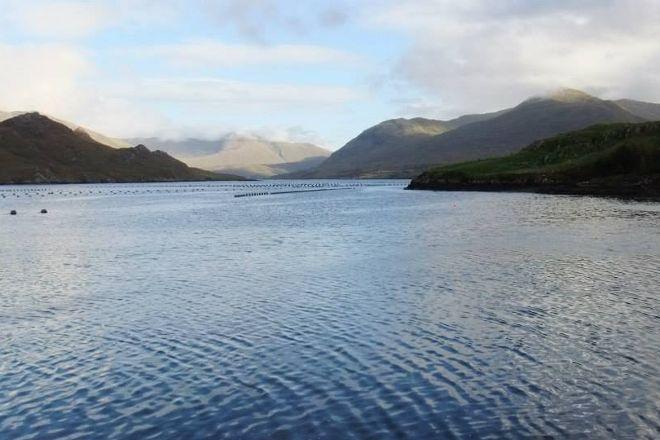 Killary Fjord, Leenane, Ireland