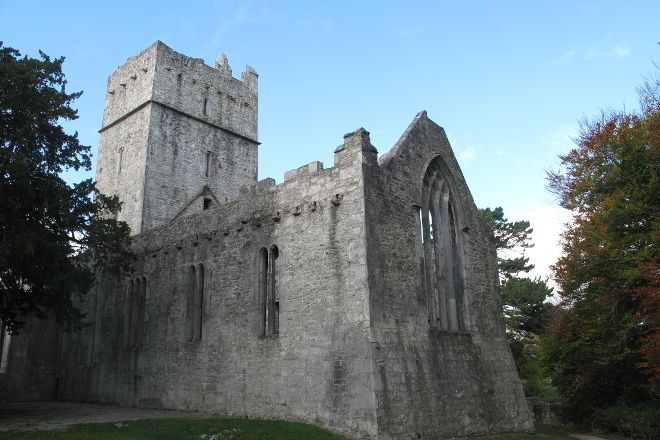 Muckross Abbey, Killarney, Ireland