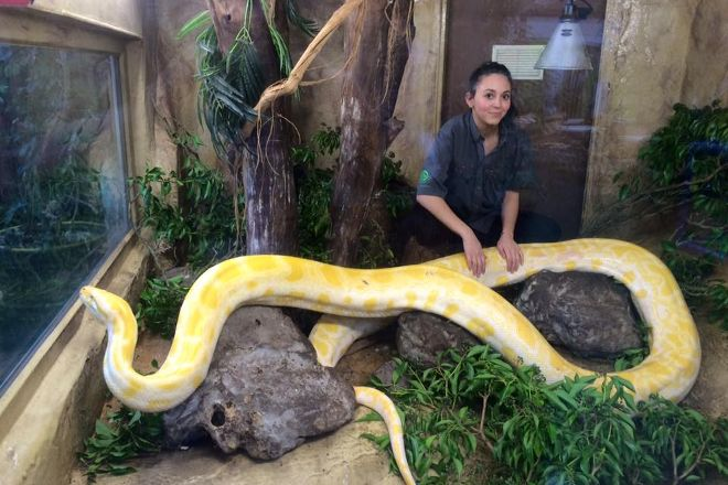 The National Reptile Zoo, Gowran, Ireland