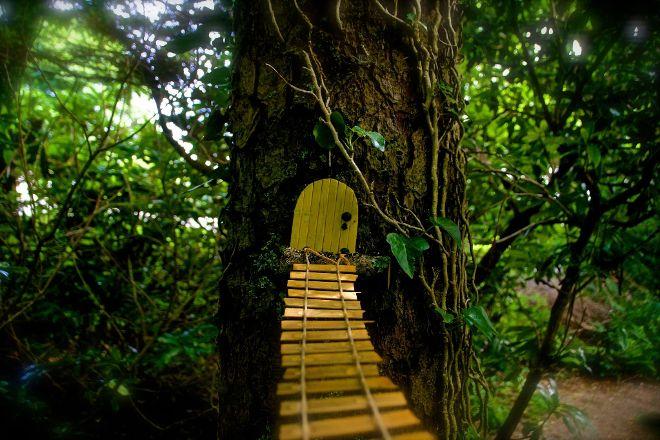 Woodland Faerie Trail, Achill Island, Ireland