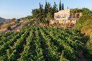 Naaman Winery