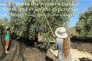 Western Galilee Now - Tourist Information Center