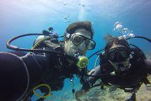 Israel Dive - diving in Eilat, Israel