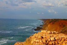 Israel With Arky: Day Tours