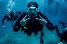 seamor diving school