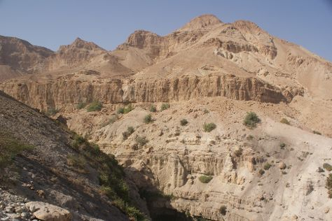 En Gedi Nature Reserve, Dead Sea Region, Israel