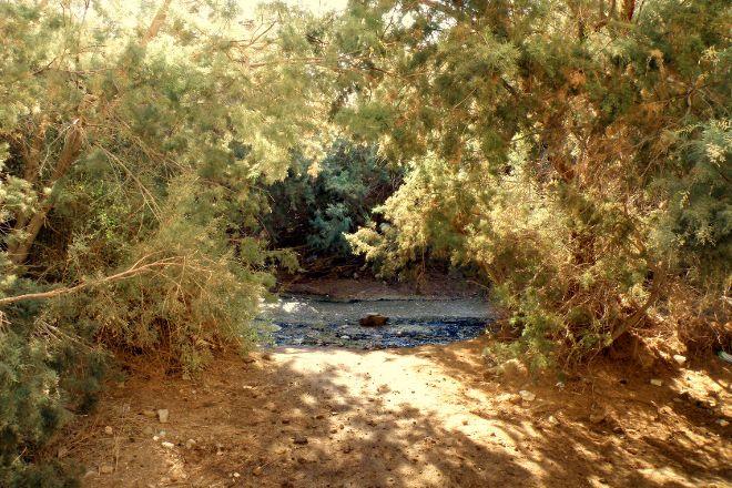 Bokek River, Ein Bokek, Israel