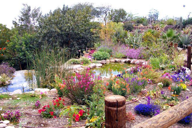Botanical Garden Of Eilat, Eilat, Israel