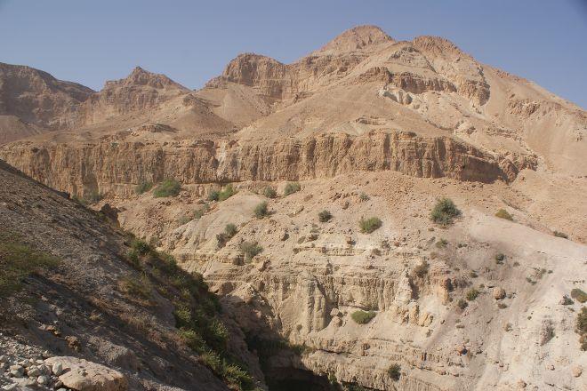 En Gedi Nature Reserve, Dead Sea Region, Israel