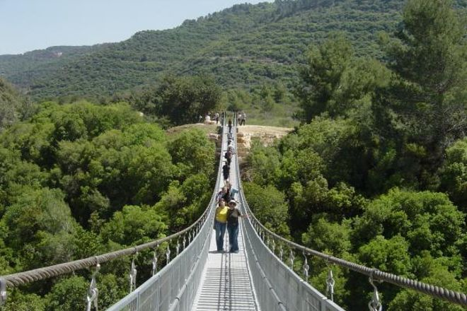 Uri's Trail ,Nesher Park Bridge, Haifa, Israel