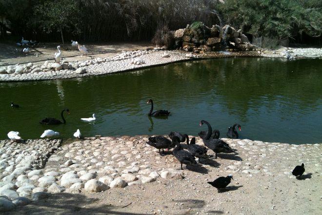 Negev Zoo, Beersheba, Israel