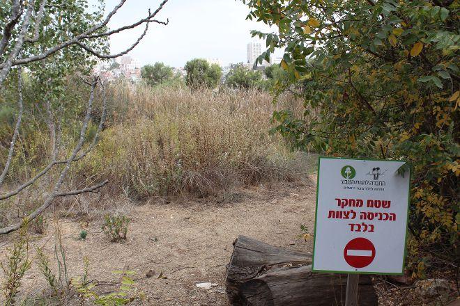 The Jerusalem Bird Observatory, Jerusalem, Israel