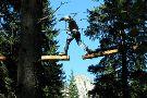 Agility Forest San Martino di Castrozza