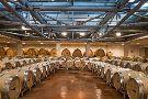 Icario Winery