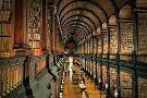 Libreria Tarantola 1899