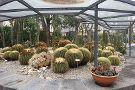 Orto Botanico dell'Universita di Catania