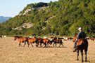 Ranch Brionna