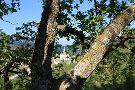 Santuario dell'Addolorata di Castelpetroso