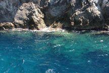 Blu Mediterraneo s.a.s