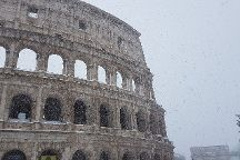 Blue Rome Tours