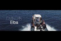 Diving In Elba Portoferraio