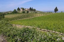 Guido's Tours - Wine Tours in Tuscany