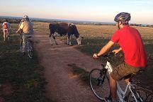 Madera Bike Tour, Ostuni, Italy