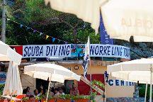 NIke Diving