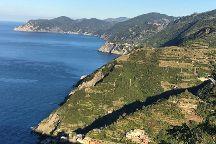 Trekguyd - Personal Guided Tours, Riomaggiore, Italy