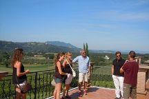 Wine Tours Rome, Rome, Italy