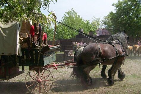 Cowboyland, Voghera, Italy