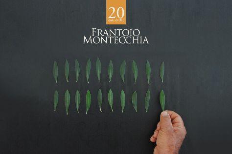 Frantoio Montecchia, Morro d'Oro, Italy