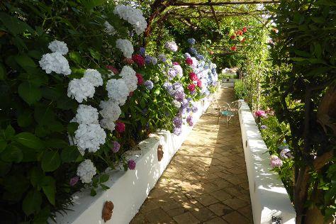 Giardino Segreto dell'Anima, Tramonti, Italy