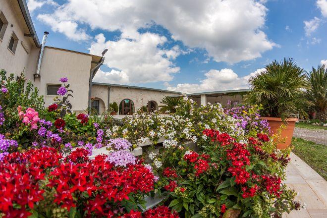 Azienda Agricola Masseria Pianelle, Martina Franca, Italy