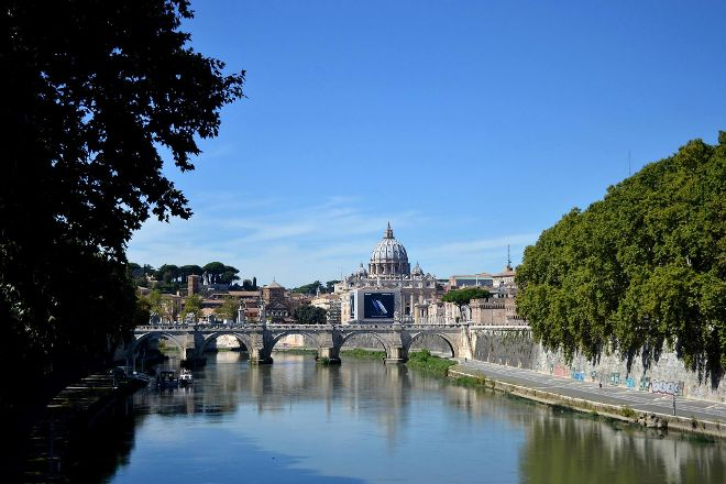 Colosseum and Vatican Tours by Italy Wonders, Rome, Italy